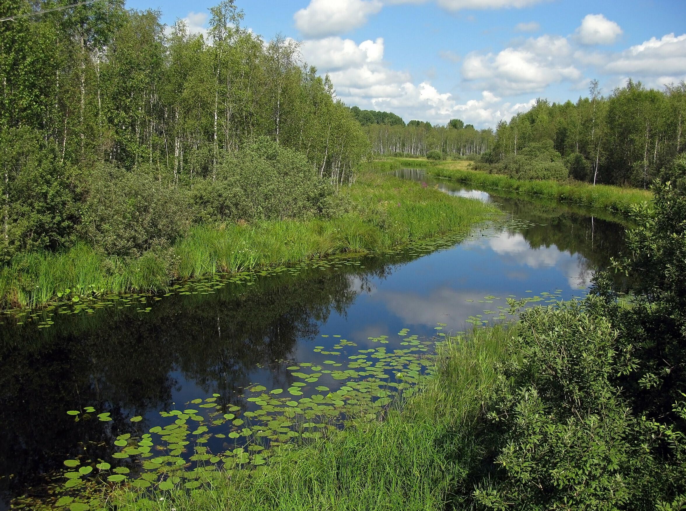 реки тверской области фото посоветовали гламус