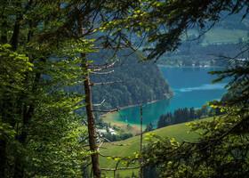Черное озеро, необязательный святой и игривый фонтан пилигримов