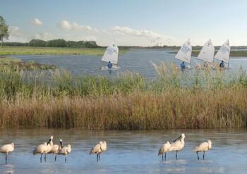 В Нидерландах учредили крупнейший в стране нацпарк