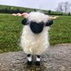 И здрасьте вам, друзья!:-) Шотландские овечки.