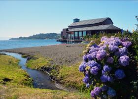 Главная туристическая аттракция Фрутильяра все то же озеро Льянкигуэ. Туда то я  сразу и отправилась.