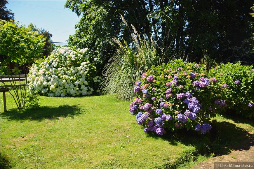 Территтория очень ухоженная, все вокруг цветет и пахнет.