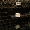 в погребах у династии, бутылки с вином, выпущенным в год рождения наследников, маркизят:))) винногастрономические туры и дегустации в Тоскане и Флоренции с Сомелье
