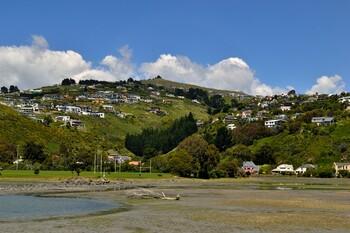 В мечетях Новой Зеландии произошла стрельба: почти 50 погибших