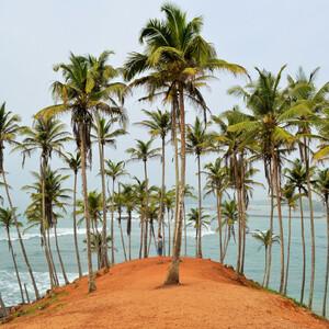 Шри-Ланка — благословенная земля. Часть 2