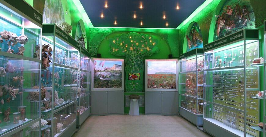 Зоологический музей в Симферополе