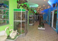 Зал позвоночных животных