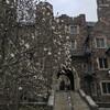 Нью-Йорк - Принстон - Филадельфия, 1-дневная поездка c Ярославом Бондаренко. Принстон,