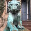 Нью-Йорк - Принстон - Филадельфия, 1-дневная поездка c Ярославом Бондаренко. Принстон, символ университета, тигр