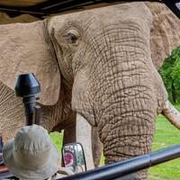 Африканское ралли. Часть 9. Замбия