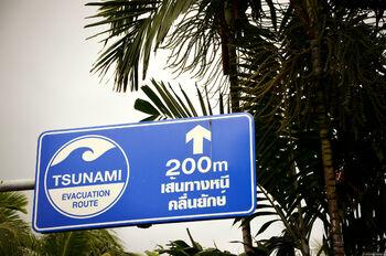 Указатель пути эвакуации при угрозе цунами