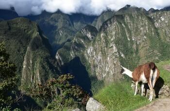 Перу: календарь праздников и фестивалей