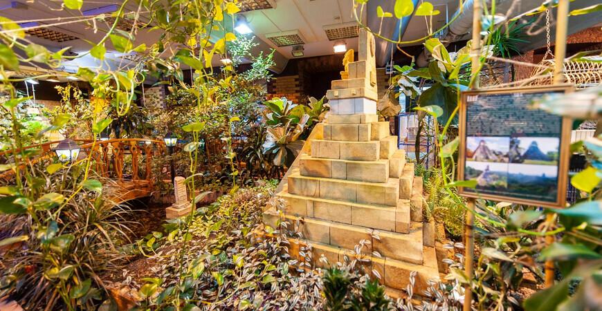 Сад тропических бабочек «Миндо»