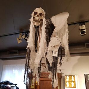 Музей Черепов и Скелетов в Зеленоградске
