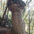 Каменные грибы Малого Салгира