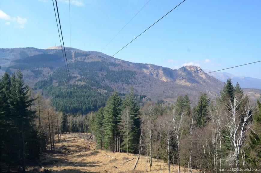 При подъеме на следующий уровень, на высоту 1385 метров, ландшафтные картинки немного меняются.