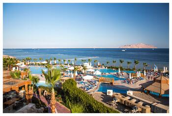 С начала года доходы Египта от туризма выросли на 36%