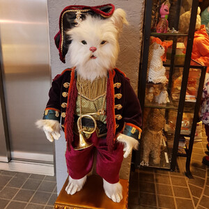 Музей кошек «Мурариум» вЗеленоградске