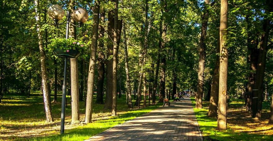Парк Толстого в Химках