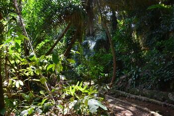Национальный парк в Уганде признан самым красивым местом в мире