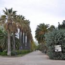 Королевские сады