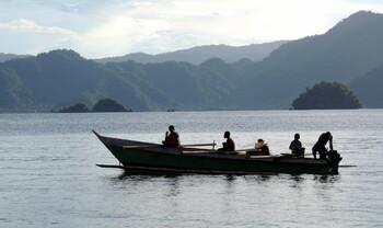 В Индонезии туристу дали пять лет тюрьмы за посещение региона Папуа