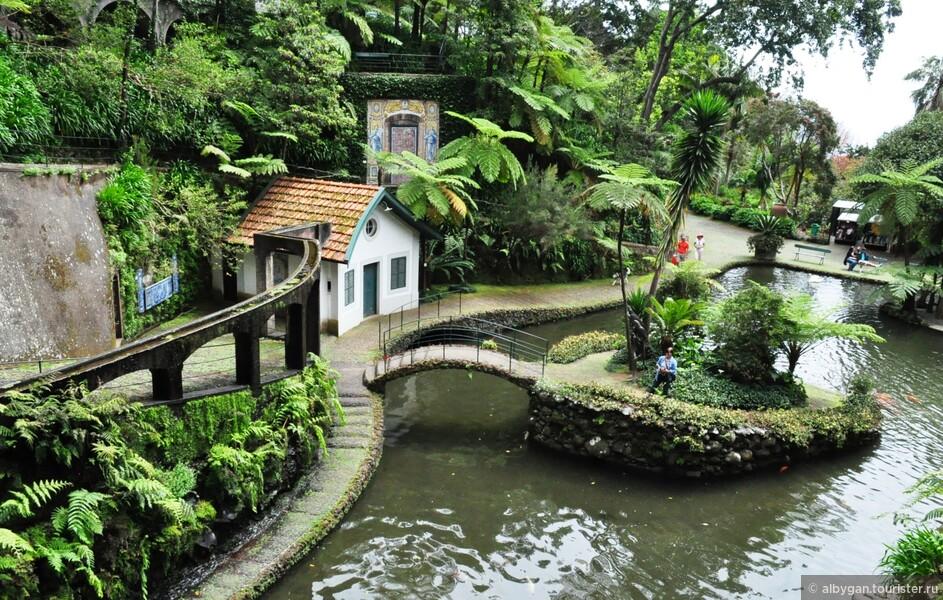 Тропический сад Дворца Монте (Фуншал, Мадейра). Не пропустите!