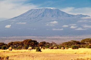В Танзании построят канатную дорогу на гору Килиманджаро
