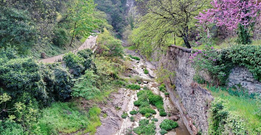 Инжировое ущелье (ущелье Легвтахеви, Тбилисский каньон)