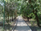 Дендропарк в Евпатории