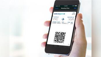 В аэропорту Внуково начнут принимать электронные посадочные талоны