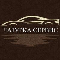Эксперт Лазурка (transferlazurka0)