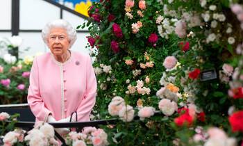 В Великобритании пройдёт масштабная выставка цветов