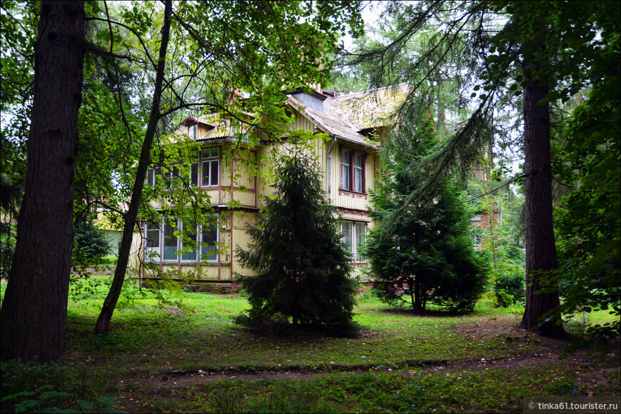 Виллы стоят прямо в лесу! Благодяря этому присутствует каокй-то элемент сказочности.