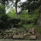 Ботанический сад и дуб-часовня в Кутаиси