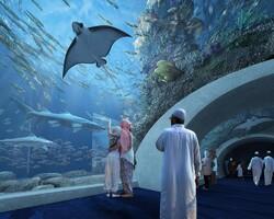 В Омане открыли крупнейший на Ближнем Востоке аквариум
