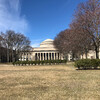 MIT, Массачусетский Институт Технологий. Экскурсия по Бостону с Ярославом Бондаренко.