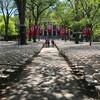 Гарвардский университет перед выпускной церемонией.  Экскурсия по Бостону с Ярославом Бондаренко.