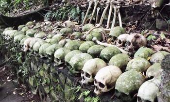Туристов призывают не посещать деревню мёртвых на Бали