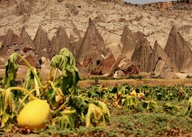 Неизвестная Каппадокия: Долина Ихлара