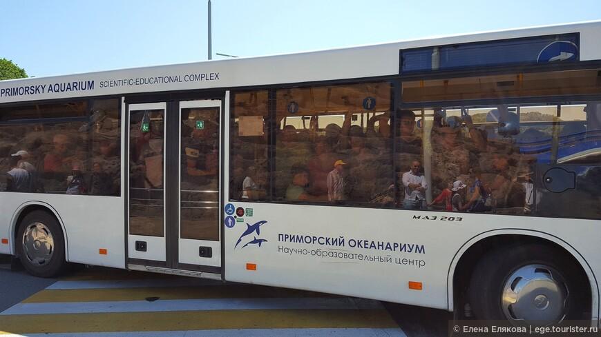 На обратном пути из океанариума мы тоже не поехали в переполненном автобусе,  но мы все отражаемся в его переднем стекле.
