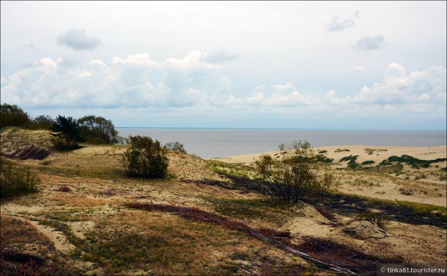 Узкой полосой разделяет она соленое Балтийское море и пресноводный Куршский залив.