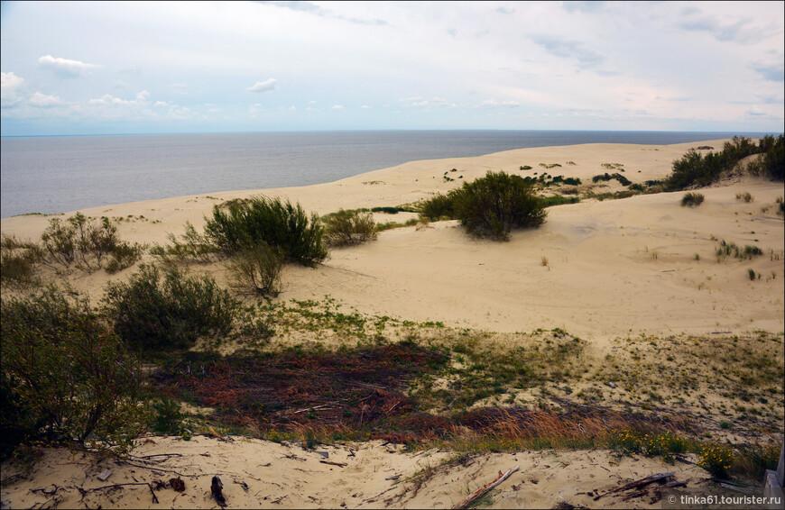 Куршская коса — уникальный природно-антропогенный ландшафт и территория исключительного эстетического значения, крупнейшее песчаное тело, входящее, наряду с Хельской и Балтийской косами, в балтийский комплекс песчаных кос, аналогов которому нет в мире.