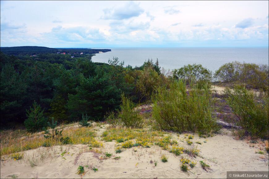 Рядом с поселком Морское находится одна из самых высоких дюн в Европе - дюна Ореховая (Петш). А самая высокая точка дюны - 55 метров - была названа высотой Эфа в честь дюнного инспектора Франца Эфа, чья деятельность была посвящена изучению и закреплению подвижных песков.