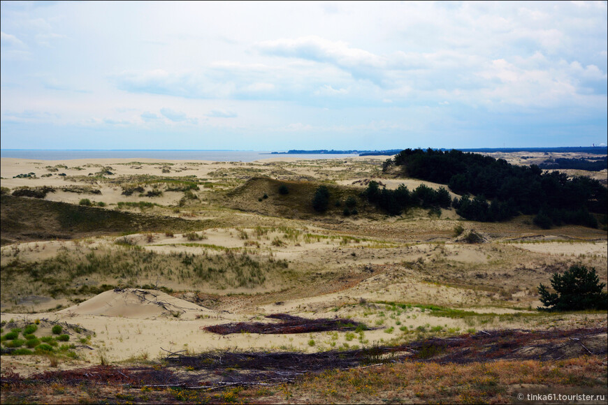 Тело косы состоит из песка, покрытого тонким (в несколько сантиметров толщиной) растительным слоем. Образование этого слоя происходило в течение многих десятилетий.