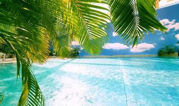 Тропический остров появится вблизи аэропорта Домодедово