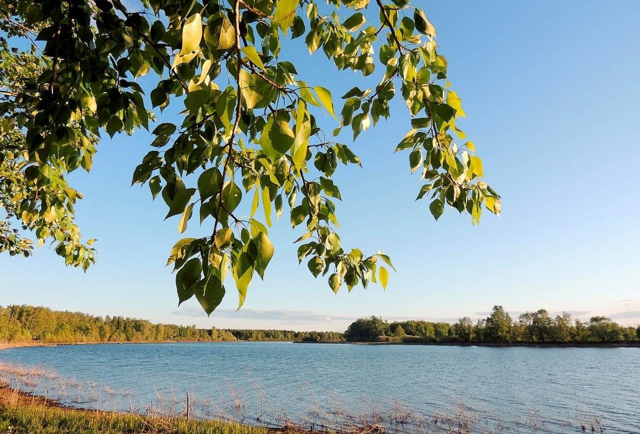 Позы для фото возле озера весной они легче