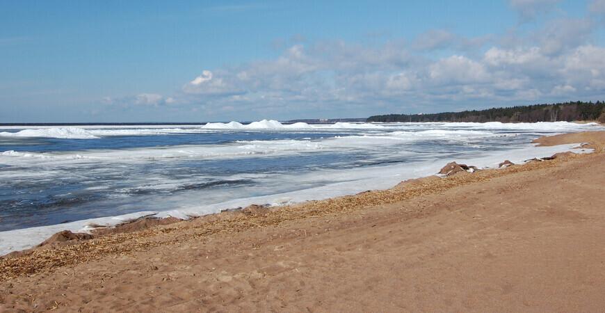 Пляж «Ласковый» в Солнечном
