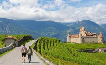 В Швейцарии туристов приглашают прогуляться по винному маршруту