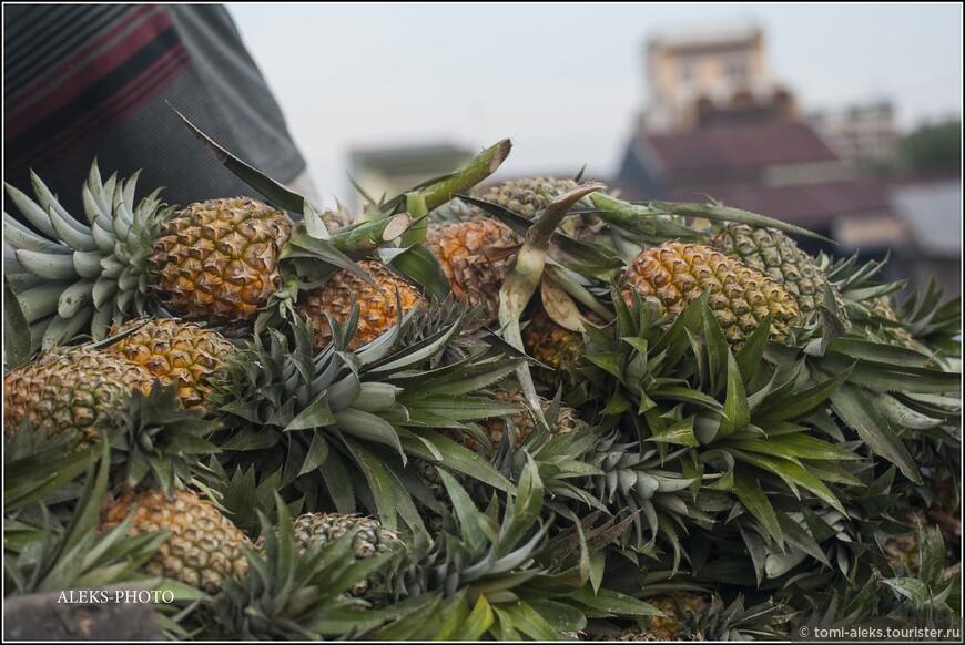 Более двух с половиной миллионов гектар в этом регионе (четвертая часть всех возделываемых земель Вьетнама) используется для выращивания овощей и фруктов... Одних ананасов, судя по статистике, каждый год выращивается более трехсот тонн...